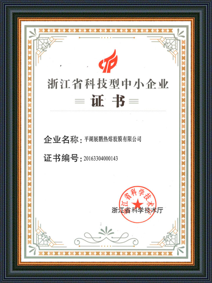 Technology SME Certificate